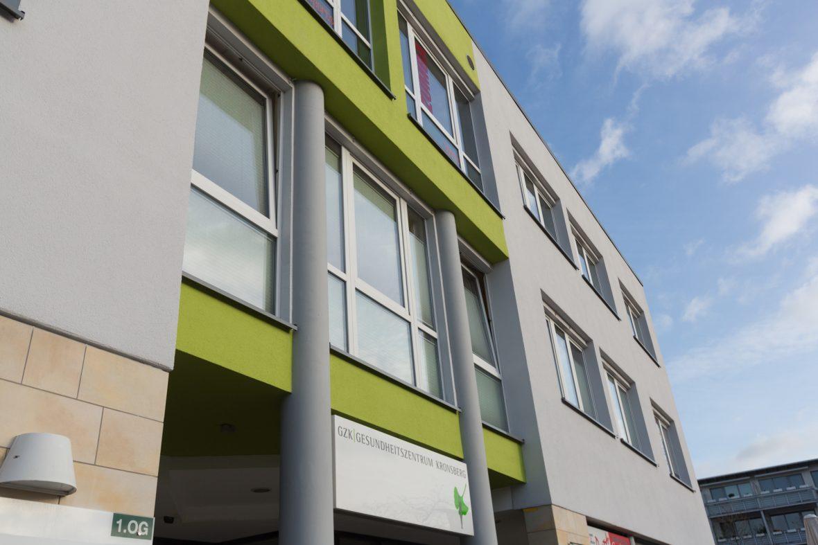 Fassade streichen Hannover Alligator Farben Grau Grün sanieren