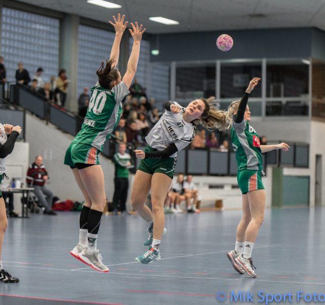 TUS Bothfeld Handball Maler Heyse Sponsoring 2