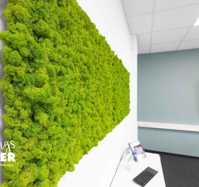 Wandbegrünung für Arbeitswelten - LieblingsMaler HEYSE